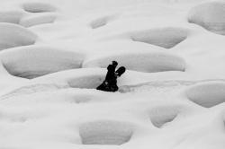 Andrew Geeves snowboarding in Pemberton B.C.